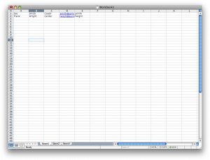 Two entries in an Excel spreadsheet with a coaches' and a player's information listed.